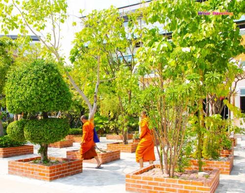 Wat Mahabut Tapınağı'ndaki keşişler,  Bangkok