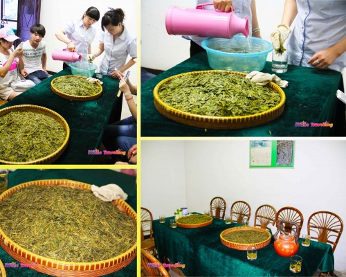 The tea trial sessions at China National Tea Museum in Hangzhou