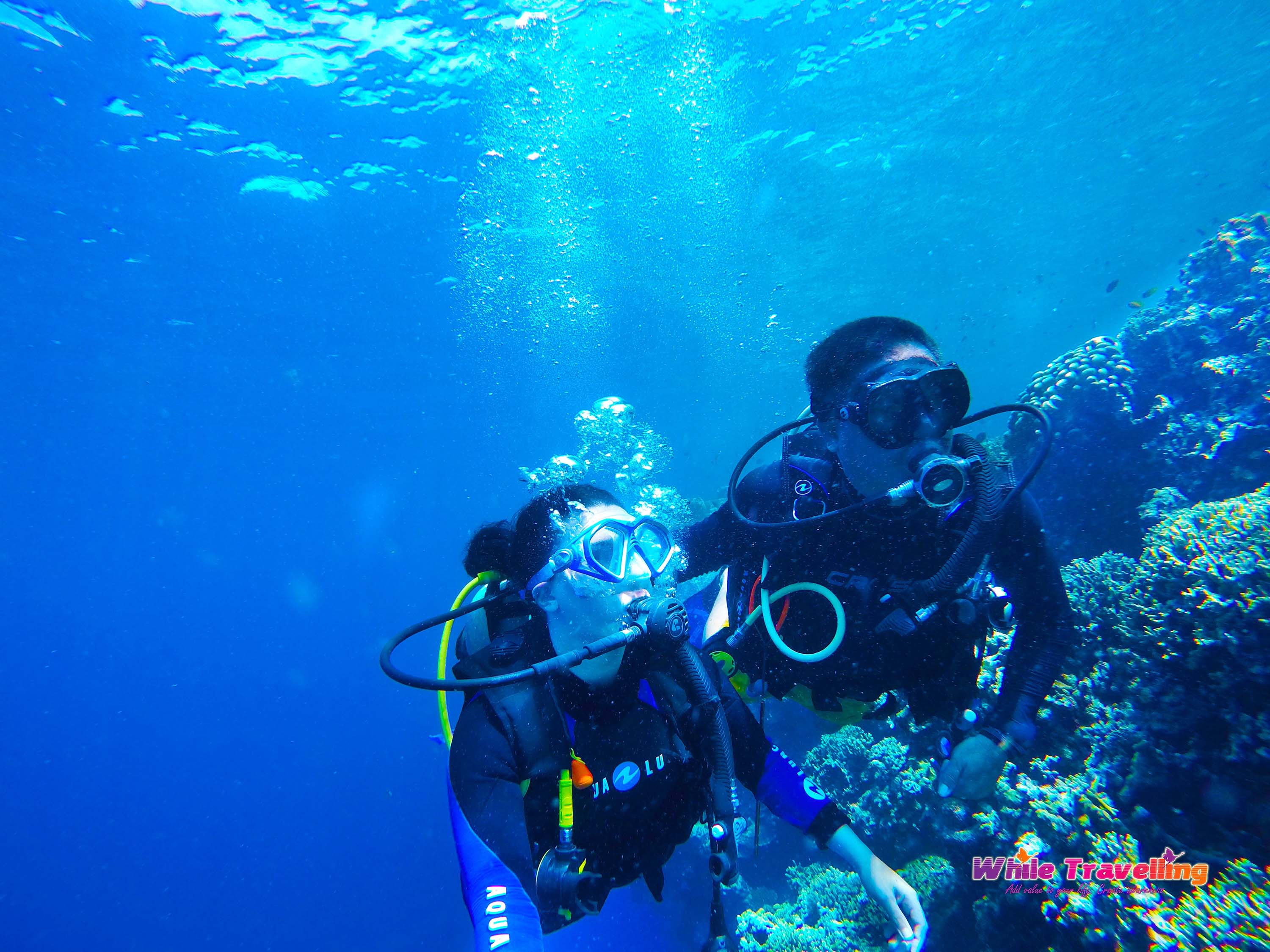 my scuba diving experience Can you dive on your period  one study observed that females were almost twice as likely to experience  some studies suggest that scuba diving while.