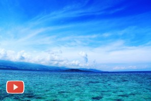 What to do in Moalboal, Philippines?
