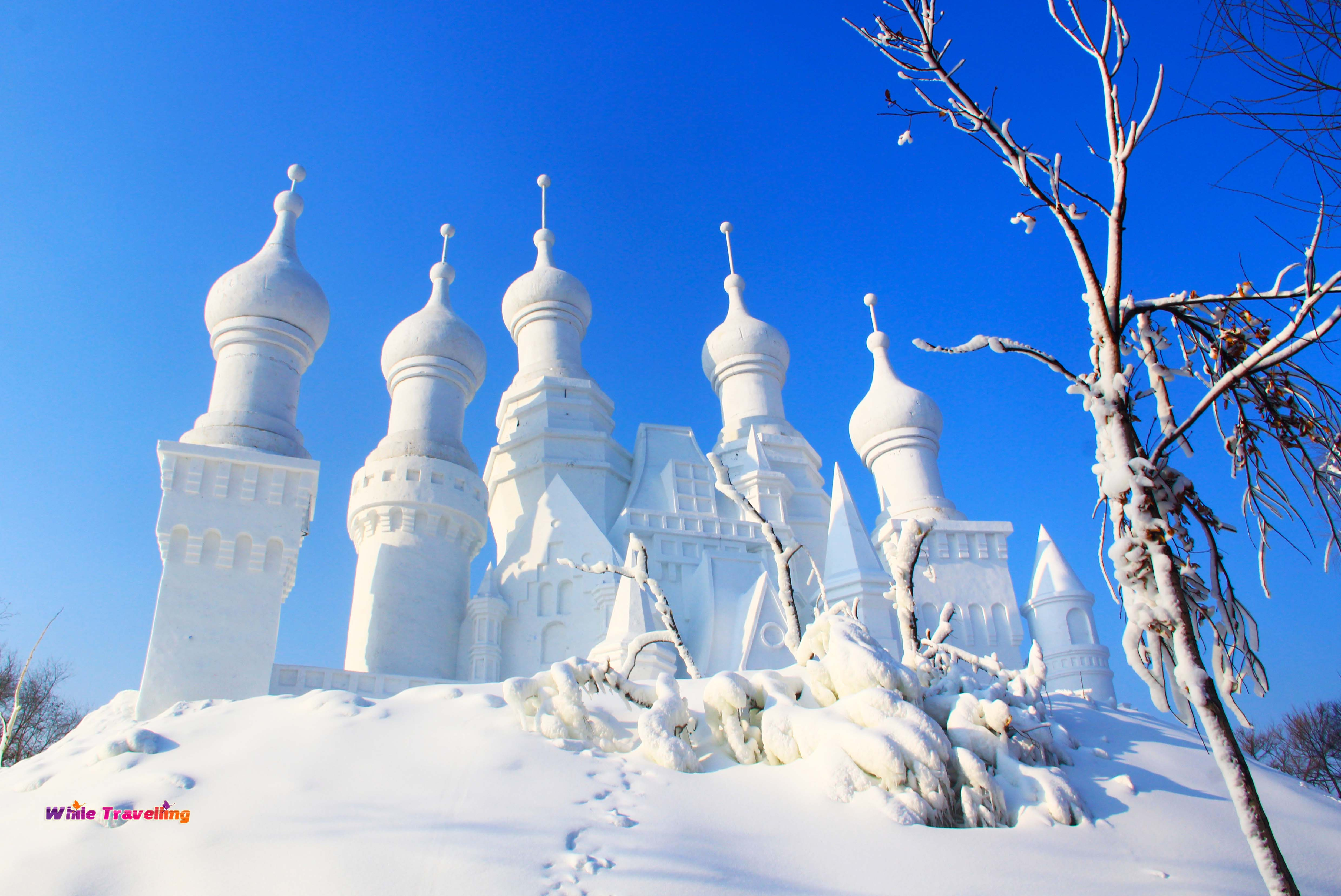 Survival Guide for Ice and Snow Festival in Harbin