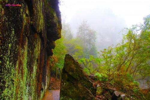 Narrow paths in Xinchang National Geopark