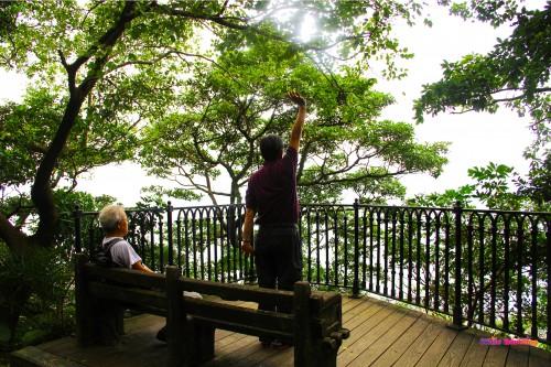 Tai Chi in Victoria Trail, Hongkong