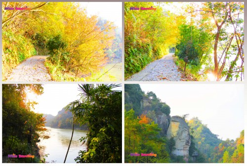 Penguin rock and the path to the wooden bridge in Tianzhu Wonderland Scenic Area in Xinchang