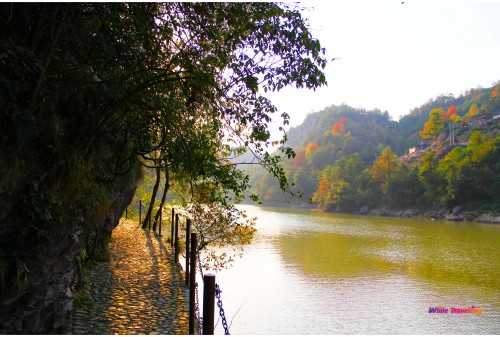 The path to the wooden bridge in Tianzhu Wonderland Scenic Area in Xinchang