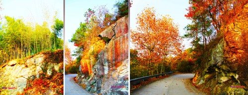 The back routes of the village in Tianzhu Wonderland Scenic Area in Xinchang